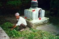 worker-separating-herbs
